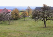 Lake Constance / Tettnang autumn