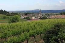 Saint-Marcel-d'Ardèche from Saladin winery
