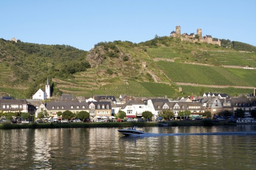 typical Mosel view